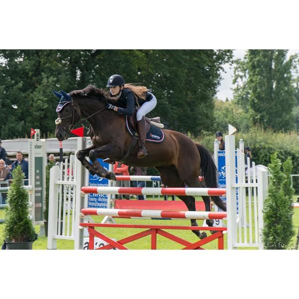 paarden springen 1